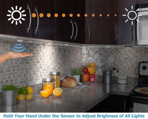 kitchen_-_HOLD_ALL_LIGHTS_967d34ee-6636-4b0d-a886-80282ae31ea0_1024x1024