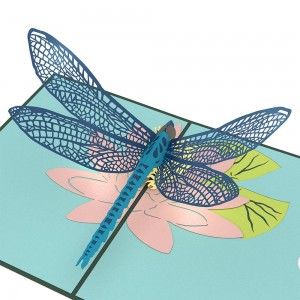 Dragonfly_Detail_2_1024x1024